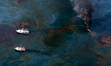 gulf of mexico oil spill clean up